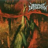 Year Of Desolation Lyrics Year Of Desolation