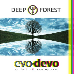 Evo Devo Lyrics Deep Forest