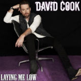 Laying Me Low (Single) Lyrics