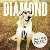 Don't Lose Your Cool (EP) Lyrics Diamond