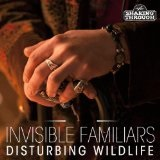 Disturbing Wildlife Lyrics Invisible Familiars