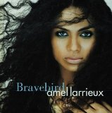 Bravebird Lyrics Amel Larrieux