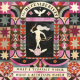 What a Terrible World, What a Beautiful World Lyrics The Decemberists