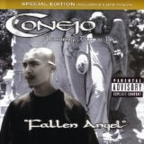 Fallen Angel Lyrics Conejo