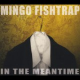 In the Meantime Lyrics Mingo Fishtrap