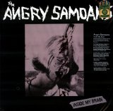 Inside My Brain Lyrics Angry Samoans