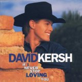 If I Never Stop Loving You Lyrics David Kersh