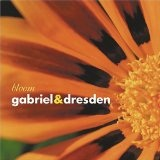 Bloom Lyrics Gabriel & Dresden
