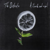 A Flourish and a Spoil Lyrics The Districts