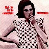 Rattlesnakes Lyrics Cole Lloyd And The Commotions