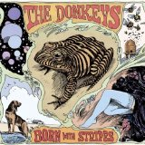 Born With Stripes Lyrics The Donkeys