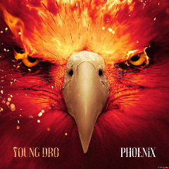 Phoenix Lyrics Young Dro