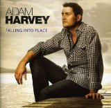 Falling Into Place Lyrics Adam Harvey