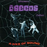A Web of Sound Lyrics The Seeds