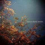 Never Shout Never (EP) Lyrics Never Shout Never