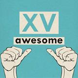 Awesome (Single) Lyrics XV