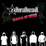 Waste Of MFZB Lyrics Zebrahead