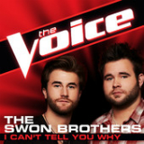 I Can't Tell You Why (The Voice Performance) [Single] Lyrics The Swon Brothers