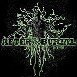 Rareform Lyrics After The Burial