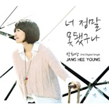 You really can not feel sorry for Lyrics Jang Hee Young (Gavy NJ)