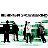 Grosses Kino Lyrics Blumentopf