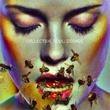 Dosage Lyrics Collective Soul