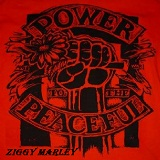 Power To The Peaceful Lyrics Ziggy Marley