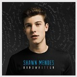 Life of the Party (Single) Lyrics Shawn Mendes
