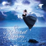 Secret Dream Lyrics David Wahler
