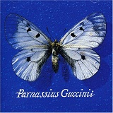 Parnassius Guccinii Lyrics Guccini Francesco