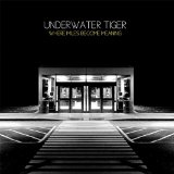 Where Miles Become Meaning Lyrics Underwater Tiger