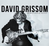 How It Feels To Fly Lyrics David Grissom