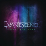 What You Want (Single) Lyrics Evanescence