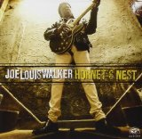 Hornet's Nest Lyrics Joe Louis Walker
