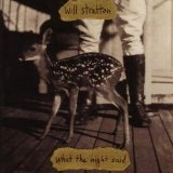 What The Night Said Lyrics Will Stratton