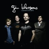 Live In Concert Lyrics Gin Blossoms