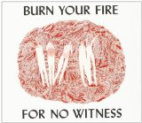 Burn Your Fire for No Witness Lyrics Angel Olsen
