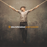 Premonición Lyrics David Bisbal