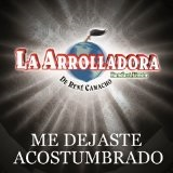 Me Dejaste Acostumbrado (Single) Lyrics La Arrolladora Banda El Limon