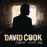 Fade Into Me (Radio Edit) (Single) Lyrics David Cook