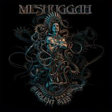 The Violent Sleep of Reason Lyrics Meshuggah