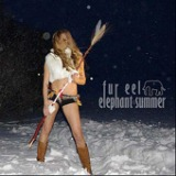 Elephant Summer Lyrics Fur Eel