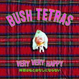 Miscellaneous Lyrics Bush Tetras
