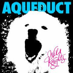 Wild Knights Lyrics Aqueduct