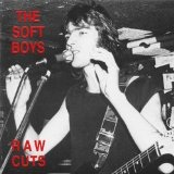 Raw Cuts Lyrics Soft Boys
