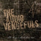The Things I Should Have Said Lyrics The Audio Vengefuls