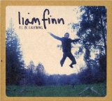 I'll Be Lightning Lyrics Liam Finn