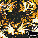 Eye Of The Tiger Lyrics Survivor