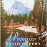 The Promise Lyrics David Sheehy