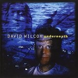 Underneath Lyrics David Wilcox